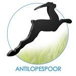 logo antilope150pixels